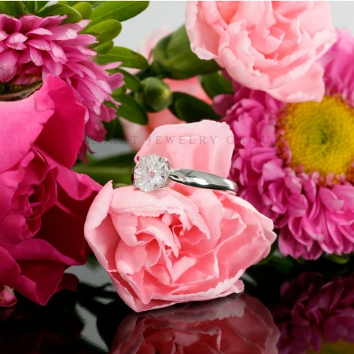Cathedral Solitaire Engagement Ring Mounting  in 14K White Gold