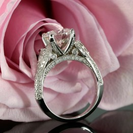 Exceptional Ring with Diamond Shank in White Gold